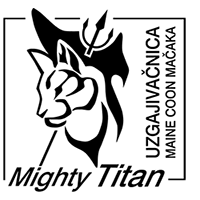 Mighty Titan